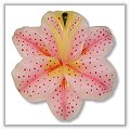 Tiger Lily Floating Candles - Medium - Pink bpi-327bp00