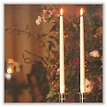 Taper Candles 7/8 x 15 inches (Box of 2) c-ta7815